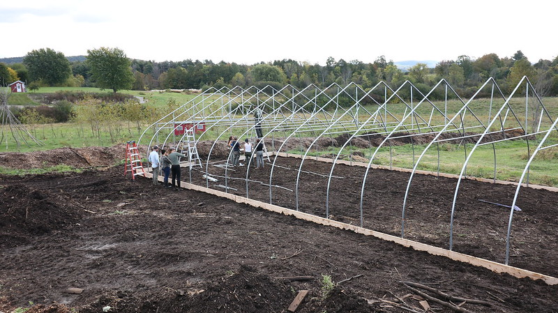 Building a Hoop House in One Day!