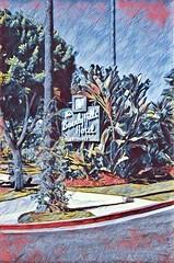 Los Angeles - California ~ Beverly Hills Hotel ~ HIstoric