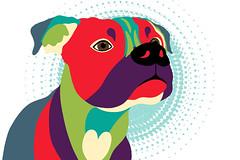 Bennie The Boxer Dog - Wpap