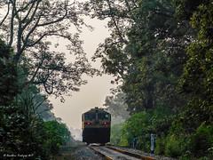 EMD in Jungle - Indian Railways !!