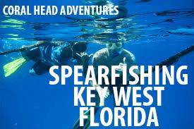 Florida Keys Vacation Spear Fishing Adventure