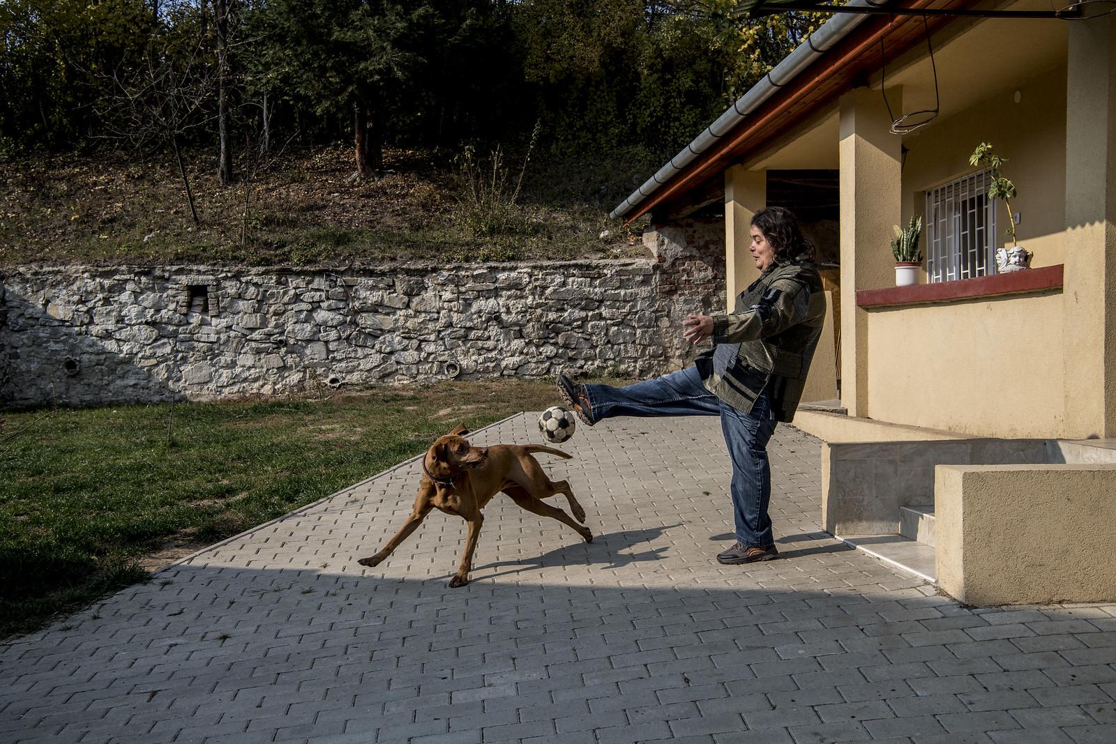 Bori és Lujza kutya | Fotó: Hajdú D. András