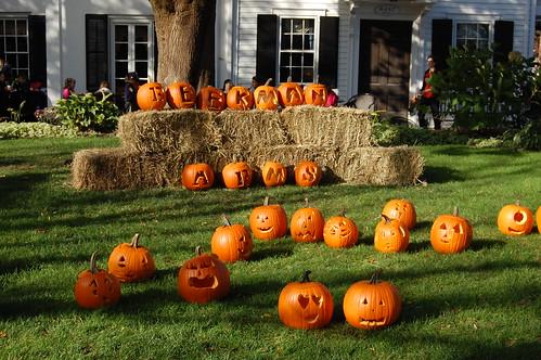 Pumpkins at the Beekman Arms