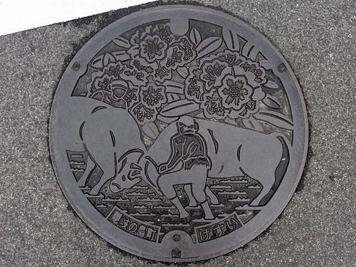 Okinoshima Shimane, manhole cover (島根県隠岐の島町のマンホール)