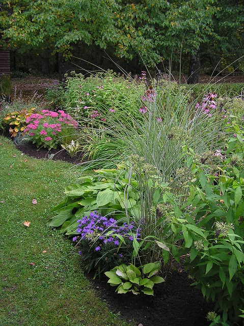 Perennials Bed