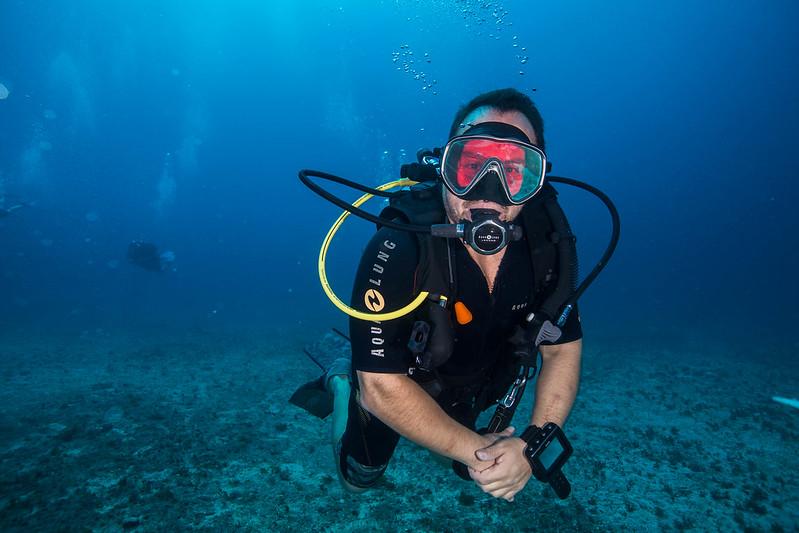 diving (29 de 77)