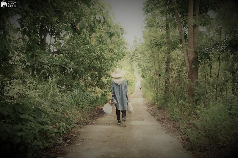 2017|酒窩小姊台南玉井芒果小旅行