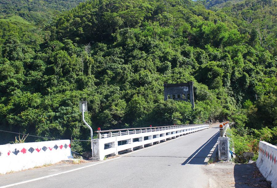 台東景點鹿野武陵綠色隧道B09