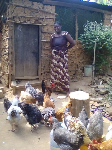 A chicken farmer in one of the ACGG Tanzania sites