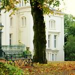 Scenic Autumn Preston