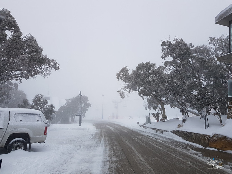 mount buller winter