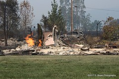 Urban Firestorm Devastation Santa Rosa California