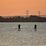 Paddleboards at Dawn