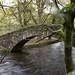 River Rothay, Ambleside  3
