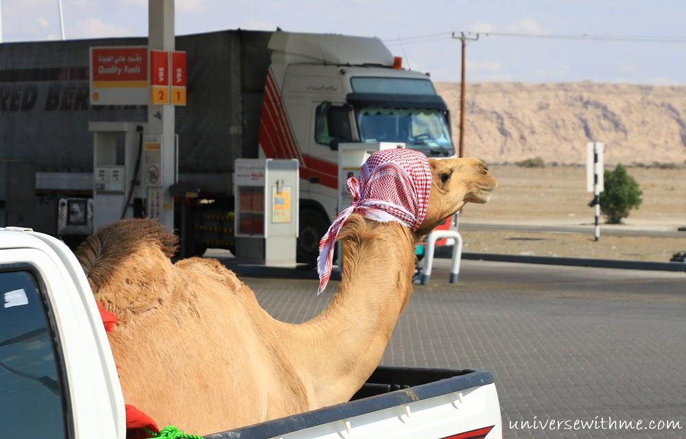 Oman_005