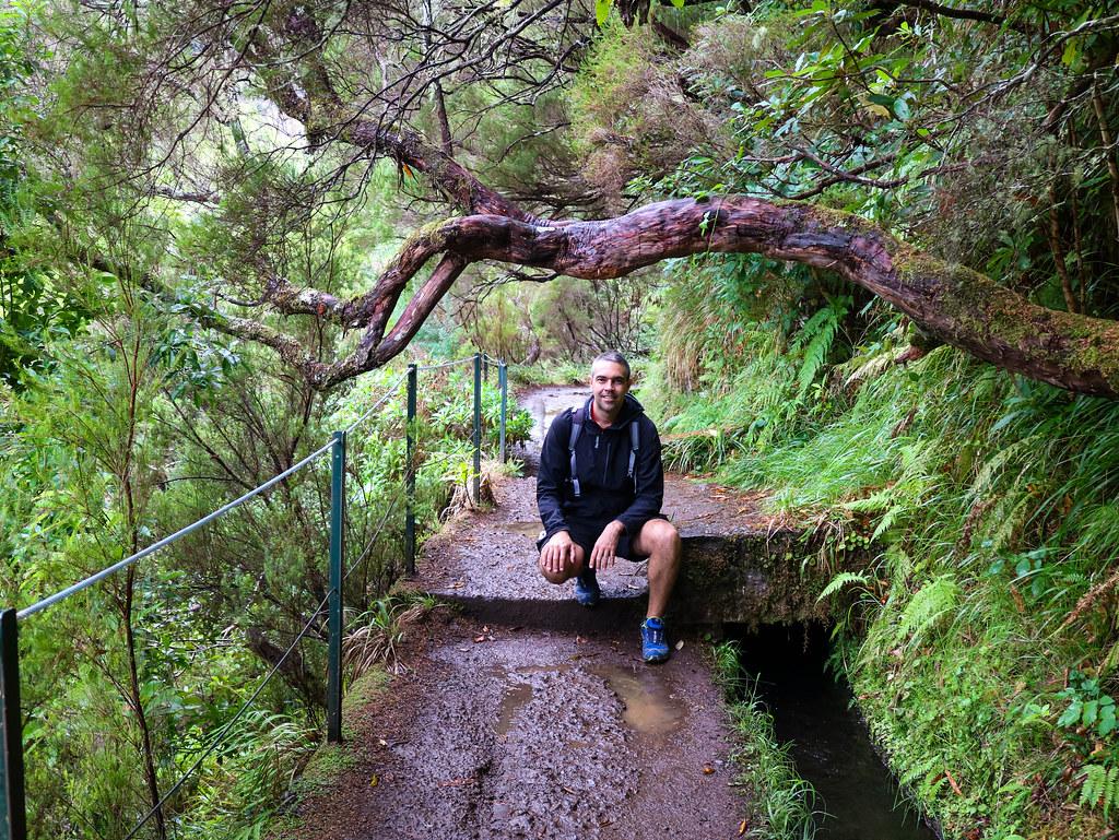 Interior de Madeira por libre