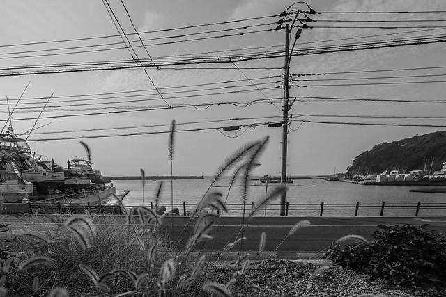 横須賀市芦名