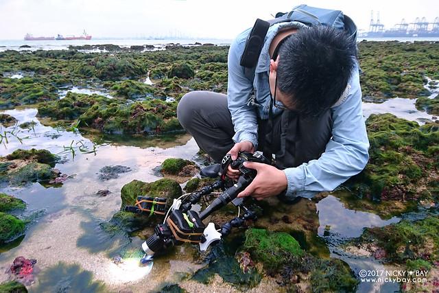 Laowa 24mm Relay Lens - DSC_5321