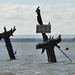 The Wreck of the Richard Montgomery Explored)