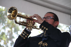 Fiesta Grande Festival-7