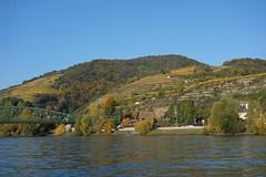 Herbst_30