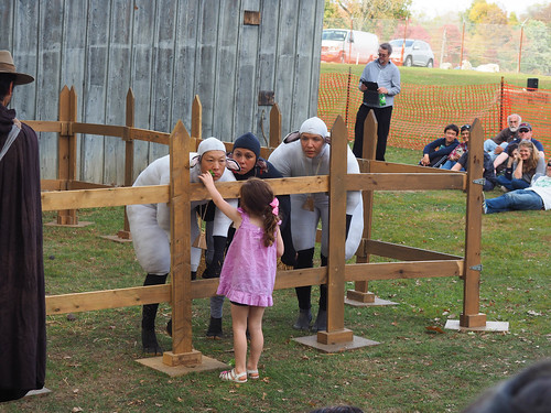 Sheeple Show