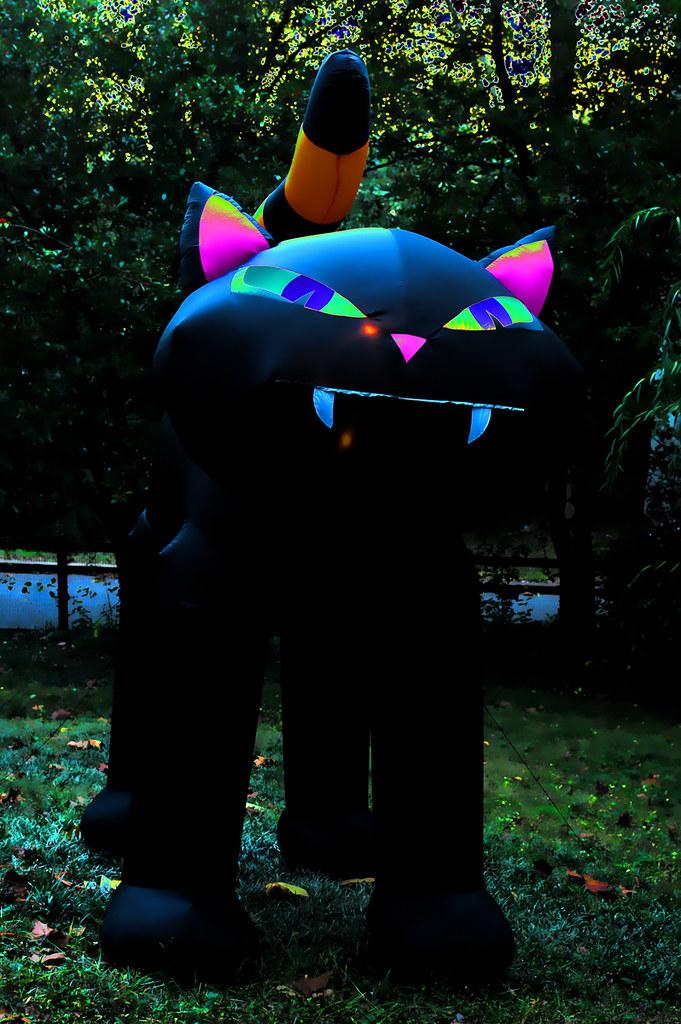 Halloween Cat II