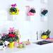 Das Alpenveilchen bringt Farbe in die Küche