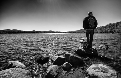 Man's Best Friend | by Marcela McGreal