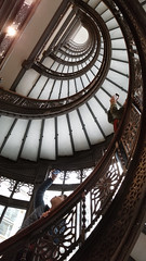 Rookery-Building