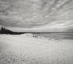 MAIN BEACH FORSTER - GALAXY S8+