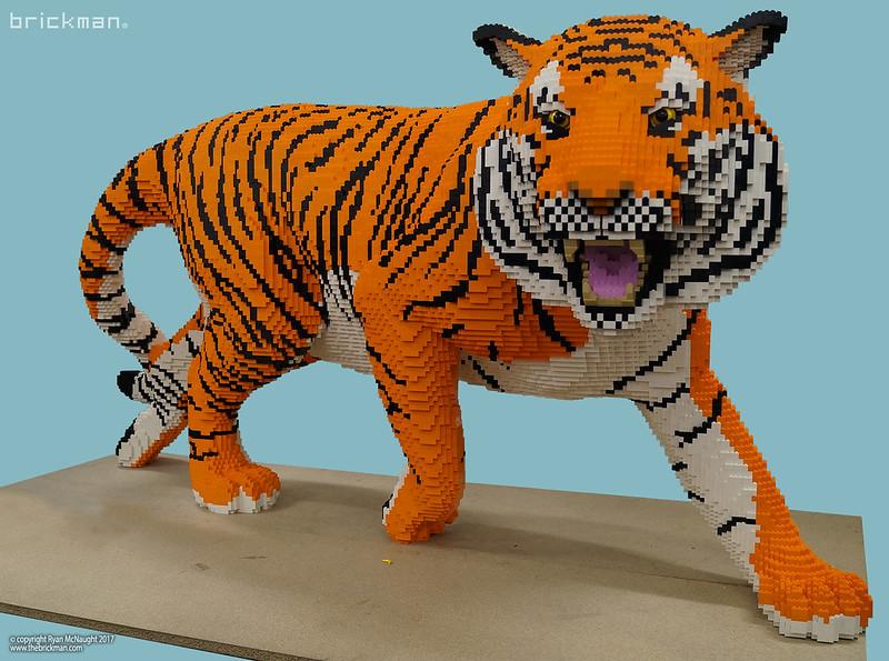 Το Ζωικό Βασίλειο από LEGO  - Σελίδα 7 24086288778_d56b859cfe_c