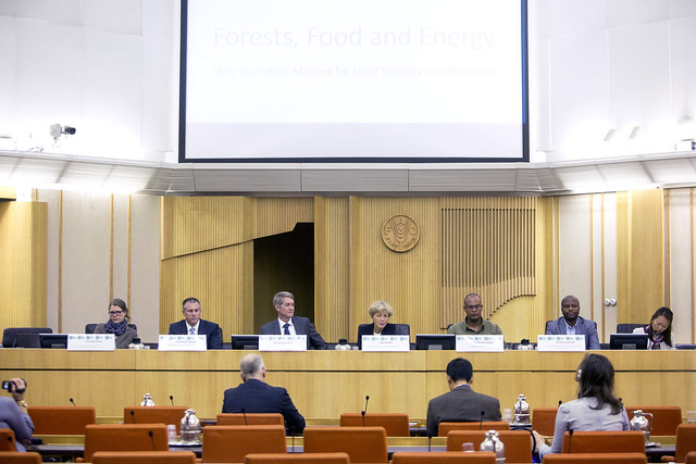 Side Event - 2 - Forest, Food and Energy