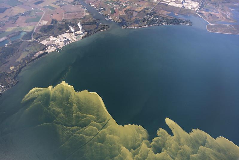 aerial photo of algal bloom in lake erie