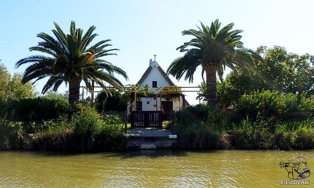 Paseo en barca por la Albufera de Valencia (2)
