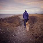2016-02-07_17-06-53 - Alter Hund folgt Frauchen