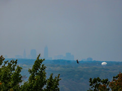 A shadowy Cleveland Skyline from Chapin Forest.