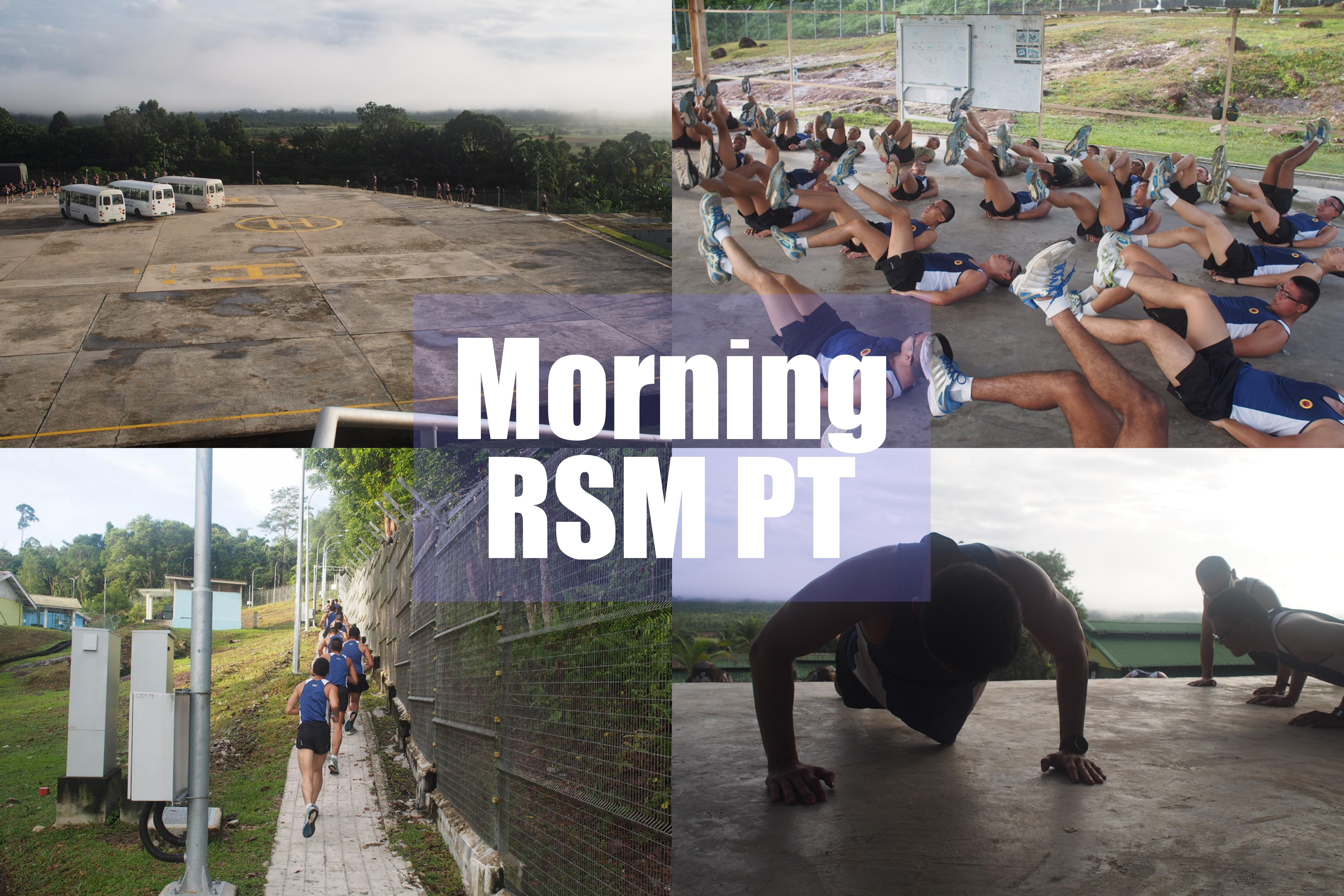 RSM PT