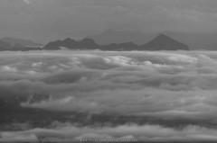 Mist or cloud?