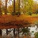 Autumn magic in the castle park Eutin by Ostseeleuchte