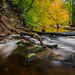Wet Feet in Autumn by RV Fotografi