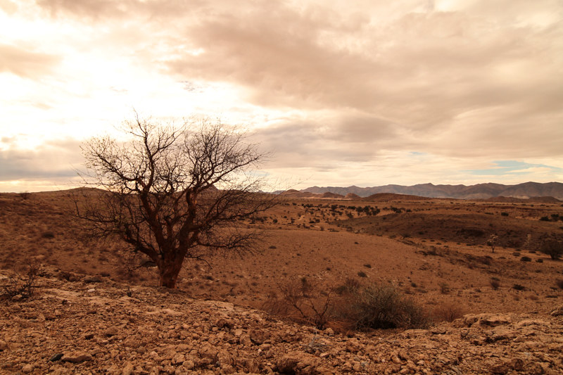 namibia-landschaftsfotografie-farm-afrika