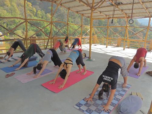 Beginner pose for yoga