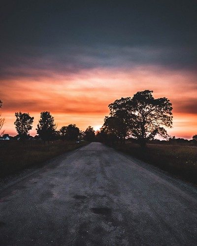Dirt Road Sunset. Holt, MI. Photographer Dan Price