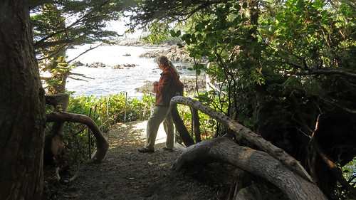 Interesting wood railings on Ucluelet's Wild Pacific Trail