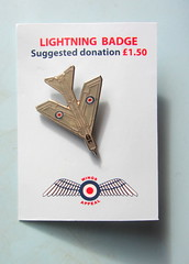 Royal Air Forces Association R.A.F. Lightning Badge Wings Appeal