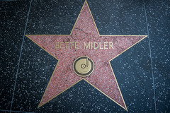 The Bette Midler Star on the Hollywood Walk of Fame