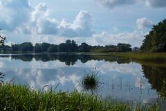 Gødstrup sø