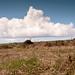 Cornwall Clouds