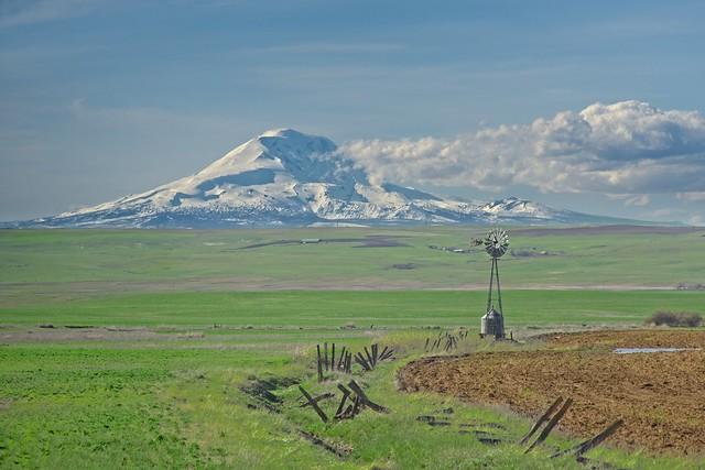 Mt Adams and Windmill 456 B